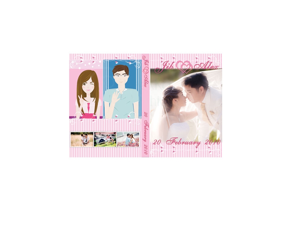 DVD Jib & Alex wedding Cover