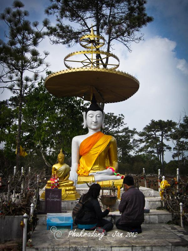 Thailand - Phugradeung - Trip
