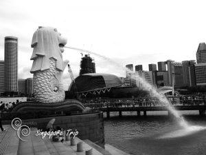 Singapore-trip