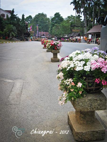 Chiangrai - Thailand - summer